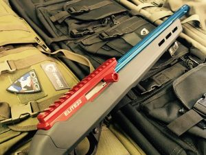 RUGER 1022 PATRIOT 2